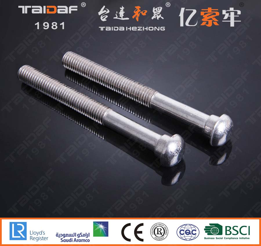 Stainless steel round head bolt